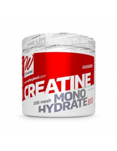 Creatina Monohidrato 200 Gr - Wheyland