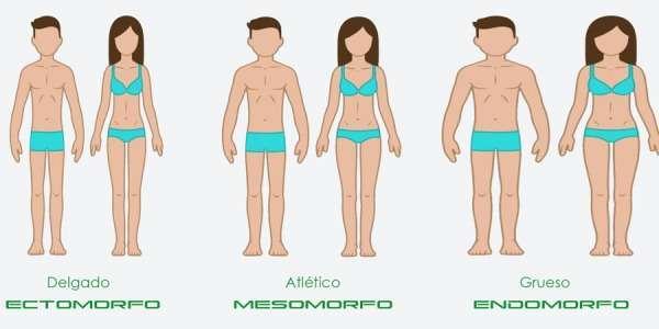 MESOTIPOS - Lo que realmente quieres saber